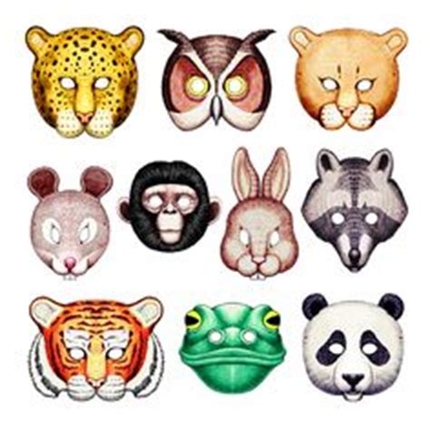 Paragraph on Wild Animals - by Anand